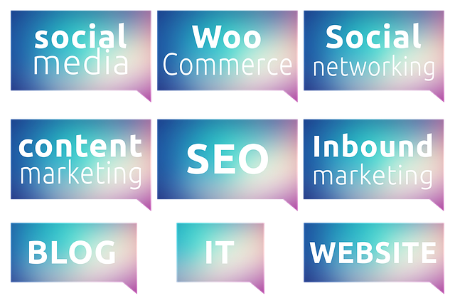 What to Look for in Content Marketing Services